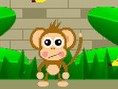Affen füttern im Zoo