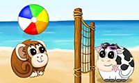 Beachball.Online