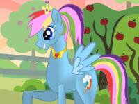 Pony Designer