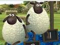 Shaun das Schaf: Meisterschaf(t)