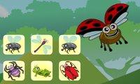 Spiele Insekten verbinden